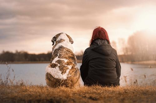 Pet Memorial Australia - Privacy Policy