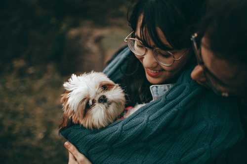 Time to Put your Dog Down Checklist