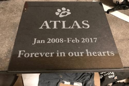 pet portrait on memorial rock